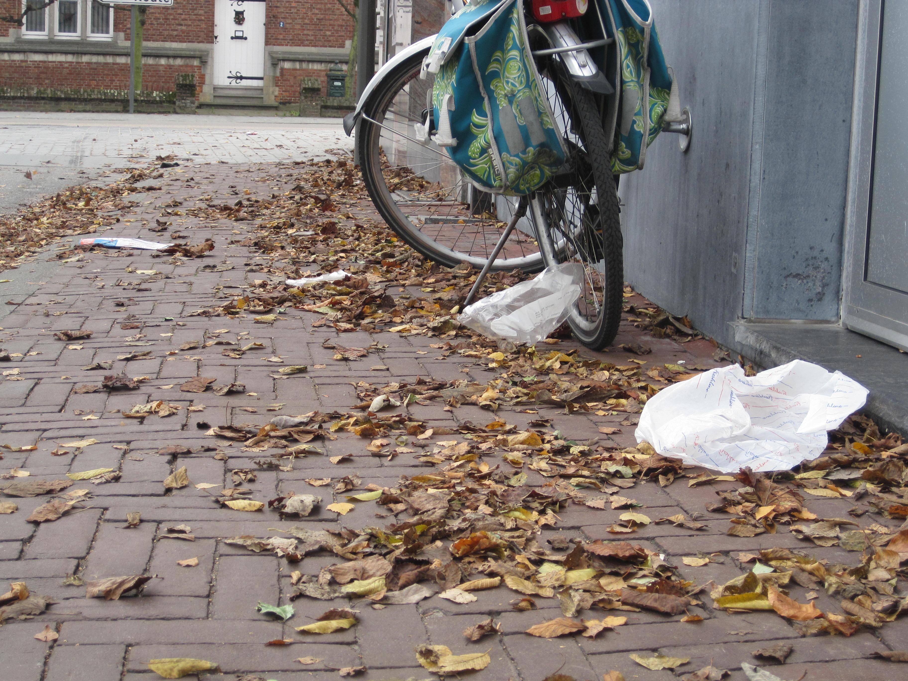 Afval in het dorp