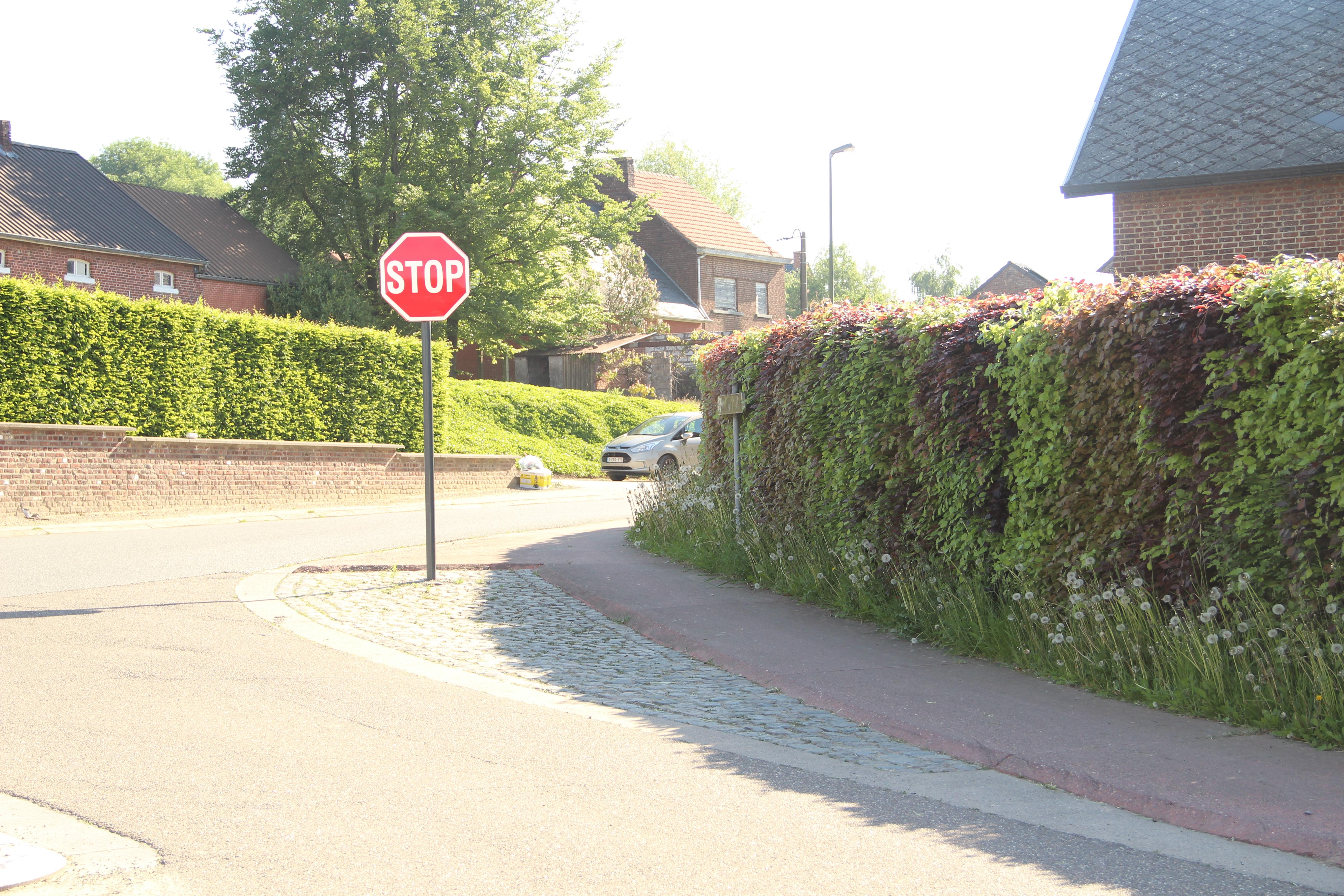 Steenbergen-Dries